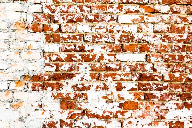 Старая и выдержанная grungy красная кирпичная стена отчасти покрашенная с белой краской шелушения стоковая фотография rf