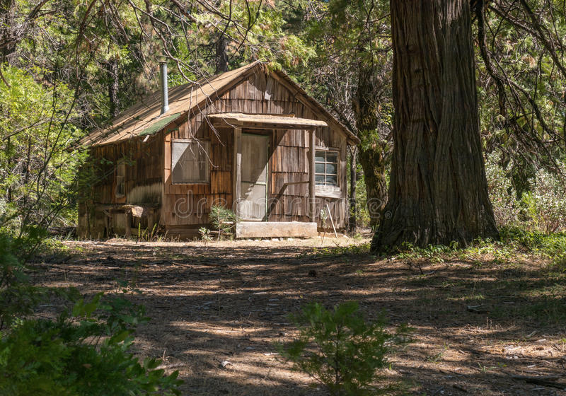 Старая кабина в лесе стоковое фото