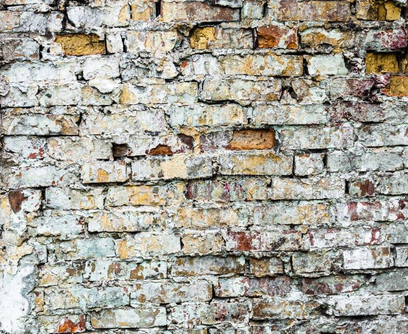Старая кирпичная стена с богатой текстурой стоковые изображения