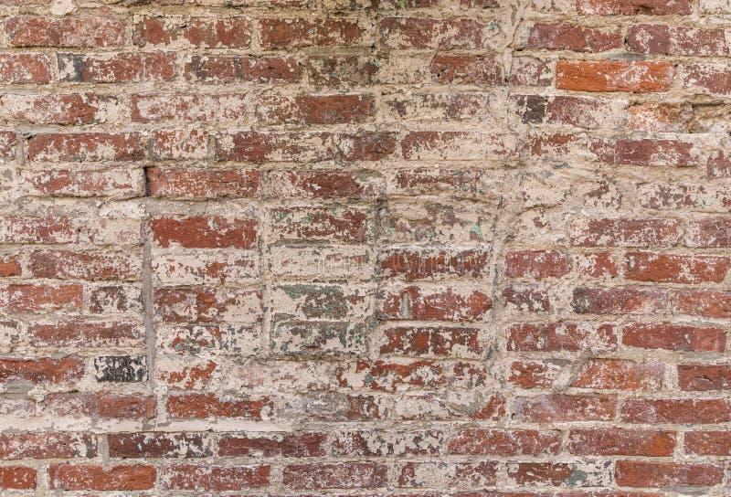 Старая кирпичная стена grunge с, который слезли белым цветом стоковое фото rf