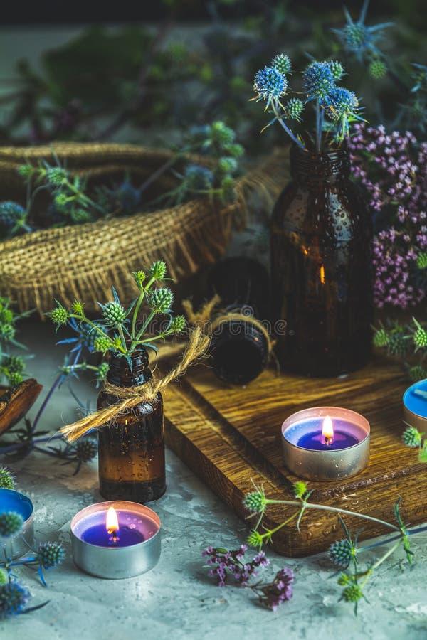 Старая концепция фармации, эзотерических или алхимических с голубым eryngo стоковые изображения