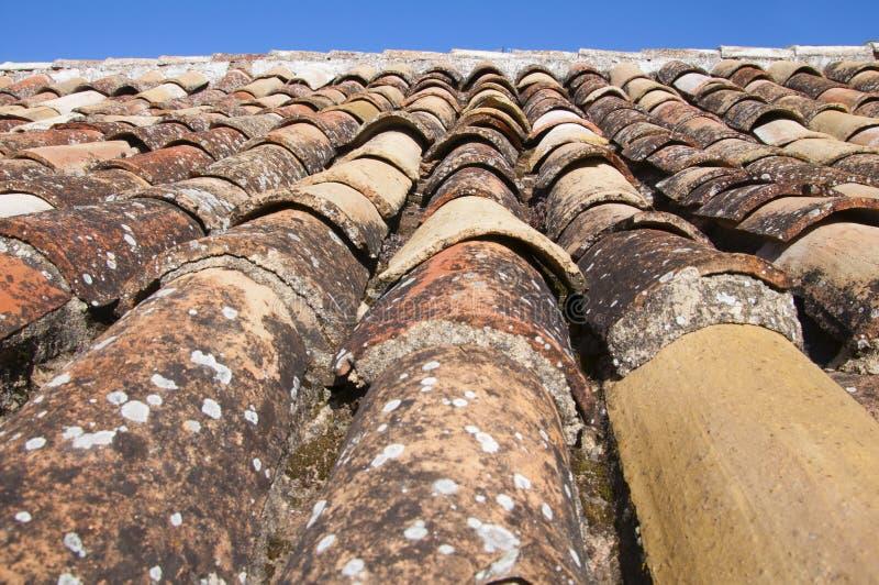 Старая коричневая плитка линии крыши и голубого неба, времени весны стоковое фото