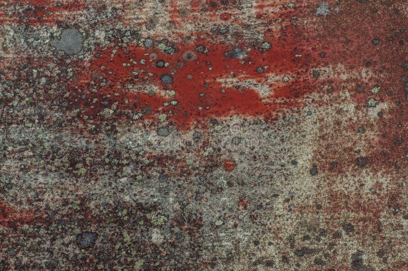 Старая красная покрашенная дверь с лишайником стоковые фото