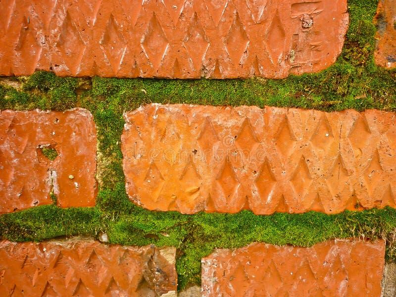 Старая кроша кирпичная кладка, мшистые кирпичи стоковое фото rf