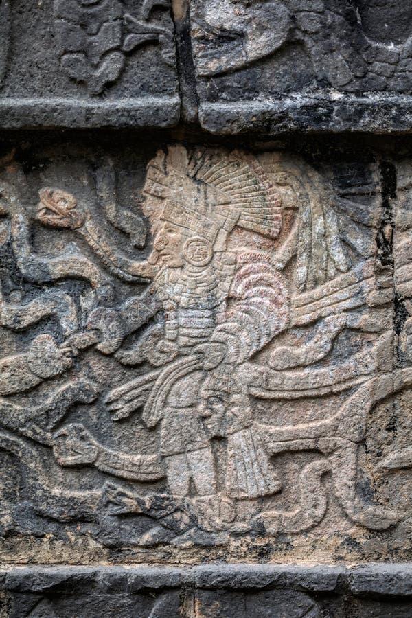 Старая майяская настенная роспись показывая ратника держа человеческую голову стоковое изображение