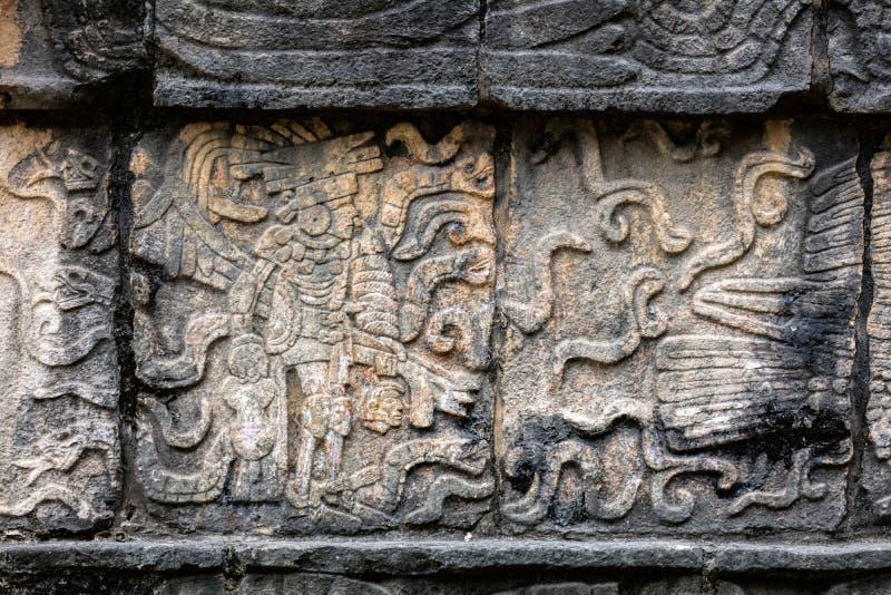 Старая майяская настенная роспись показывая ратника держа человеческую голову стоковая фотография