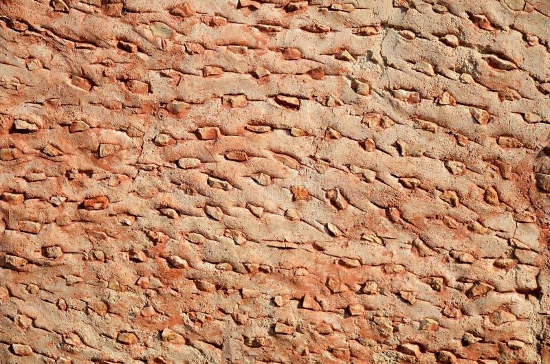 Старая мексиканская стена стоковое изображение rf