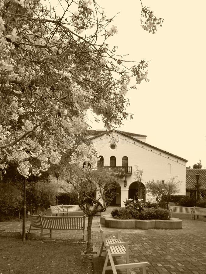 Старая Мексика стоковые изображения rf