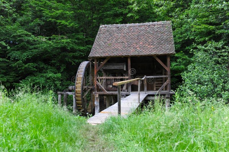 Старая мельница на небольшом реке в лесе стоковая фотография rf