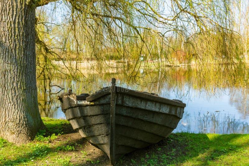 Старая несенная деревянная шлюпка на берег под деревом около малого пруда стоковое изображение