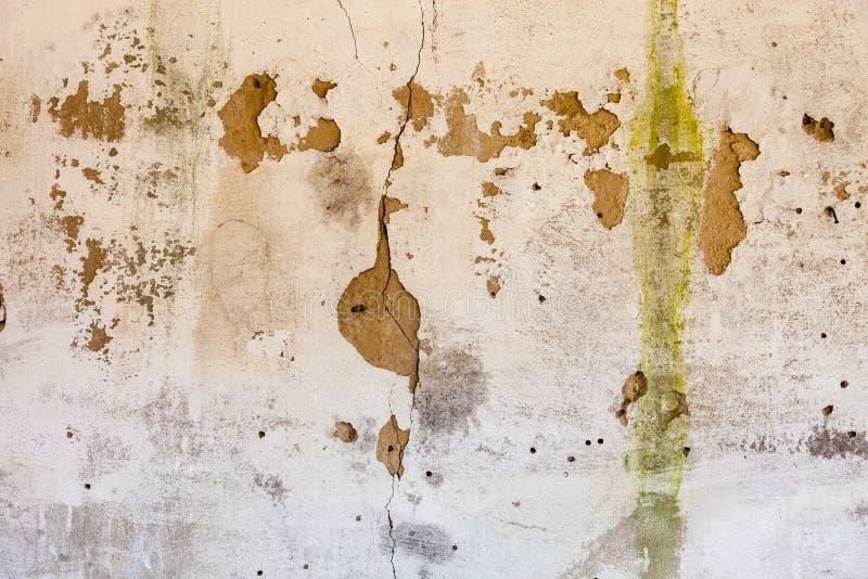 Старая побеленная стена с богатой и различной текстурой стоковые изображения