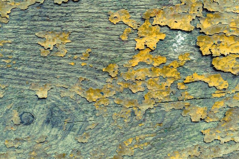 Древесина год сбора винограда Grungy старая. стоковая фотография