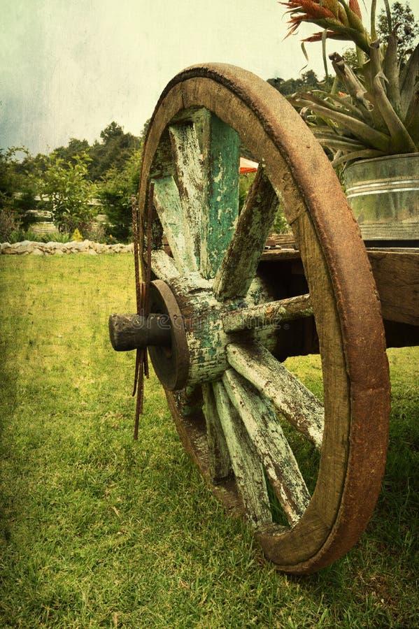 Старая древесина колеса фуры стоковые изображения rf
