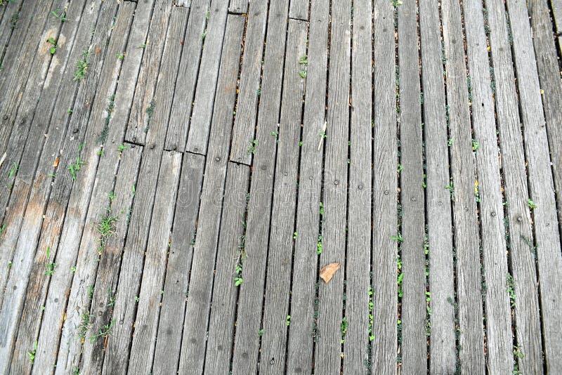старая древесина стоковые изображения rf