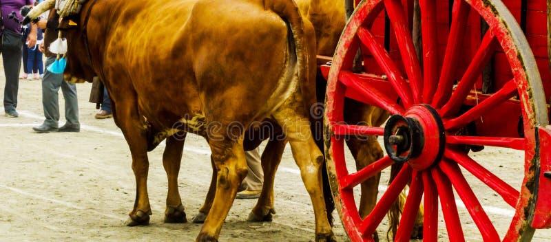 Старая ржавая деталь колеса круга с фурой, традиционные elemen стоковое фото