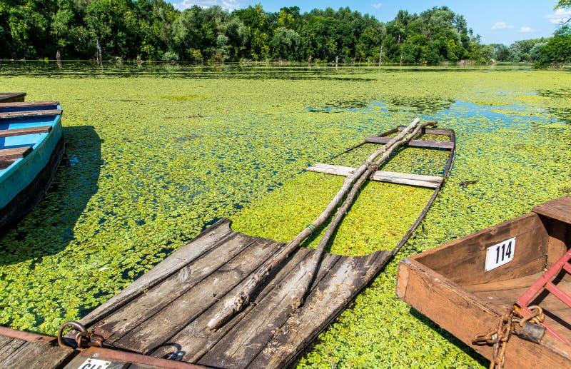Старая рыбацкая лодка на реке стоковая фотография rf