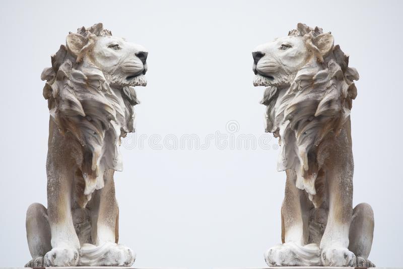 Старая скульптура белого сидя льва изолированного на белых предпосылках, одетой сильной статуи Coade каменного, памятника символа стоковое фото rf