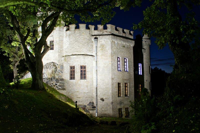 Старая средневековая крепость в глубоком темном лесе стоковое фото rf