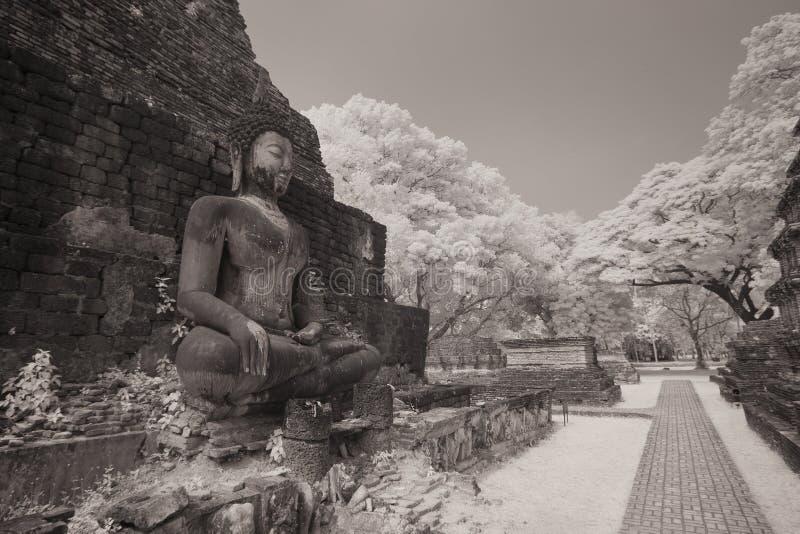 Старая статуя Будды на парке sukhothai историческом стоковое фото