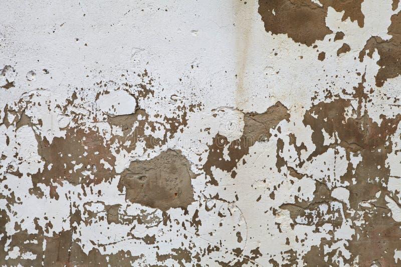 старая стена сбора винограда стоковая фотография rf