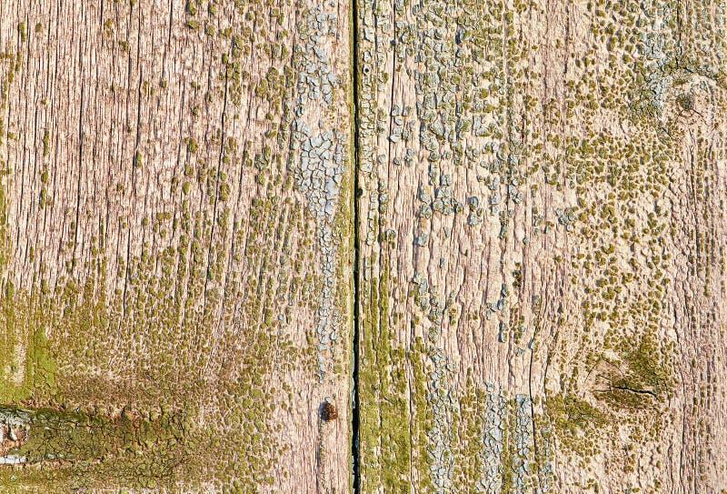 старая текстура деревянная стоковое фото