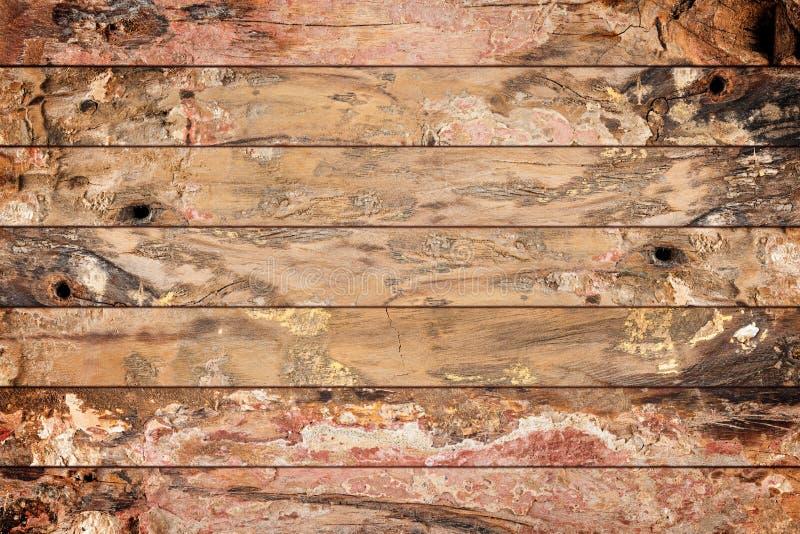 Старая текстура стены дуба стоковые фото