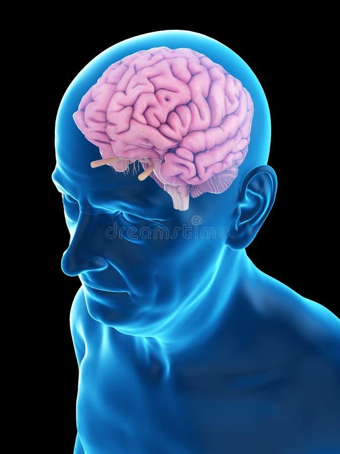Старая укомплектовывает личным составом мозг иллюстрация штока