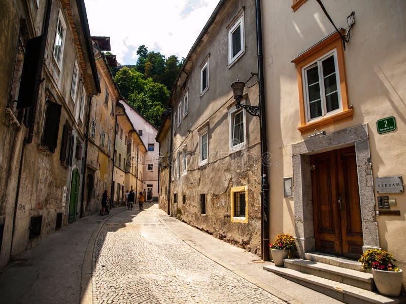 Старая улица Ljubjlana стоковые фотографии rf