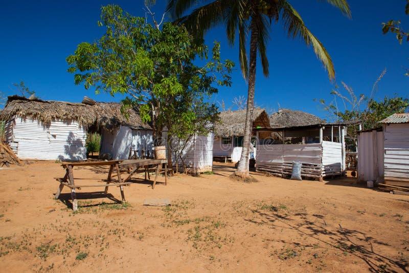 Старая ферма кофе в Долине de Vinales, Кубе стоковое изображение rf