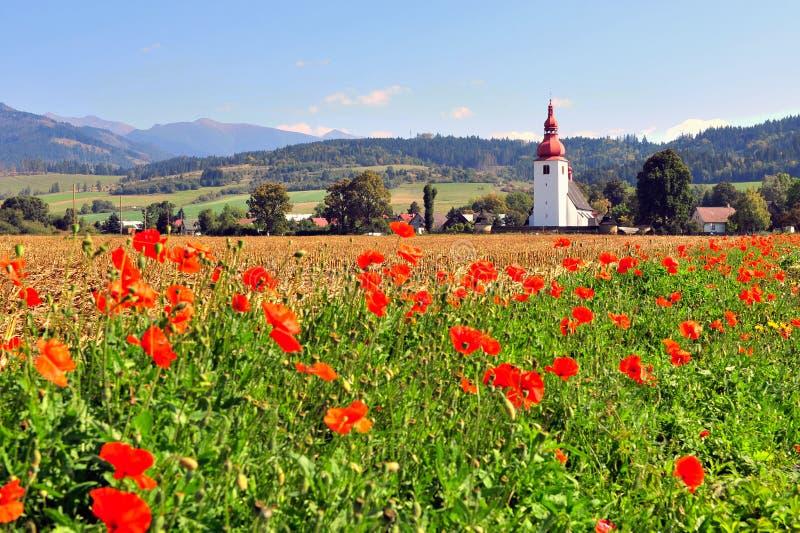Старая часовня в поле диких красных цветков стоковые изображения