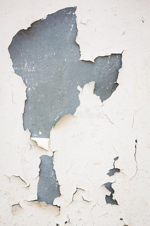 Старая flaky белая краска слезая  стоковое изображение rf