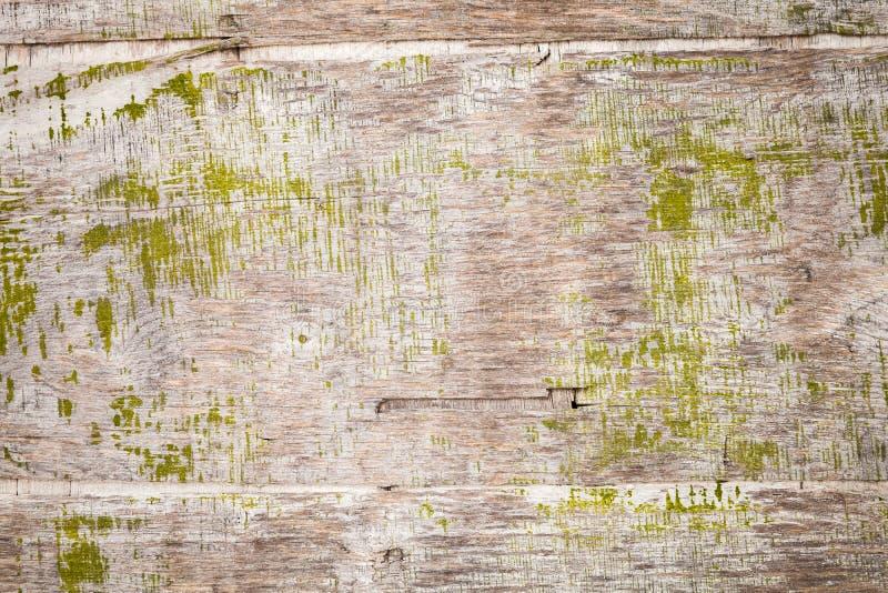 Старая grungy переклейка с зеленой краской, текстурой предпосылки стоковые изображения