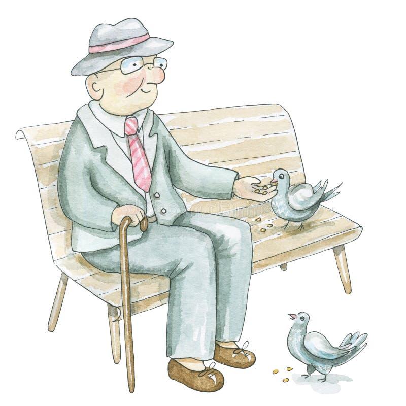 Старик акварели сидит на стенде и кормит голубей иллюстрация вектора