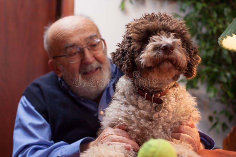 Старик с его собакой стоковое фото rf