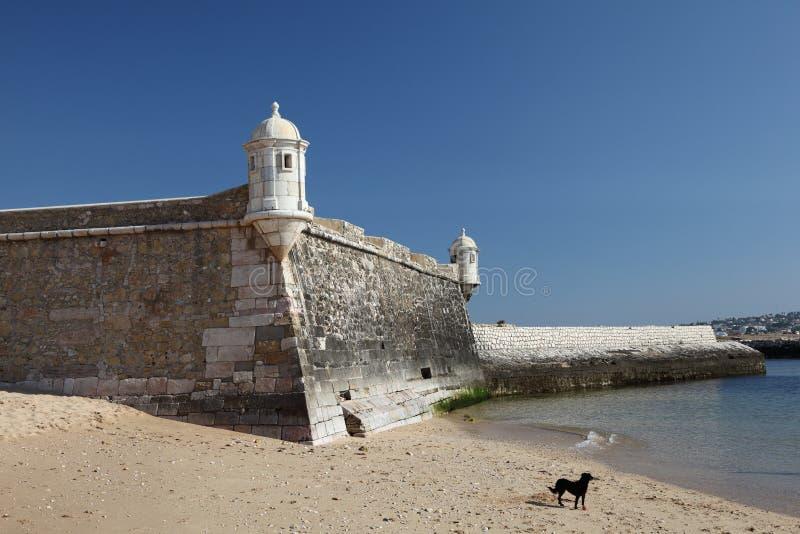 стародедовская крепость lagos стоковое изображение rf