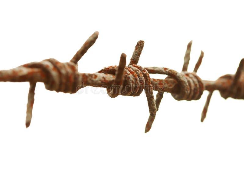 стародедовский колючий ржавый провод стоковое изображение rf