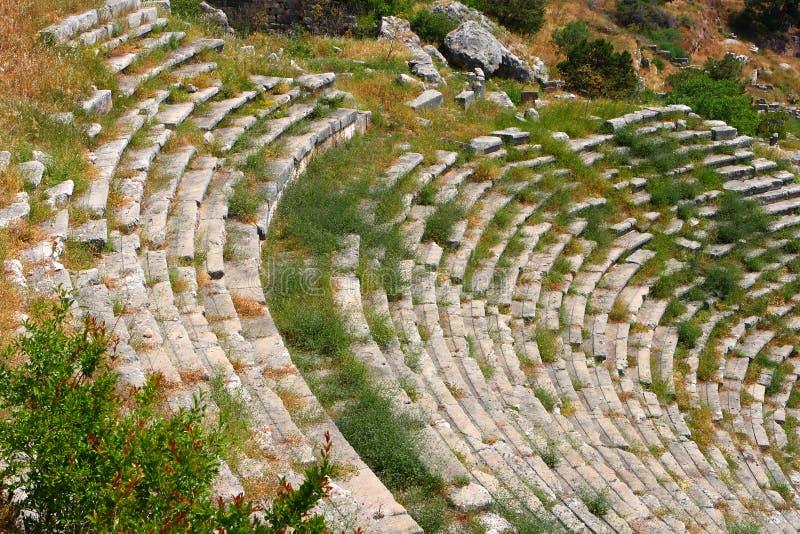стародедовский театр delphi Греции стоковые изображения rf