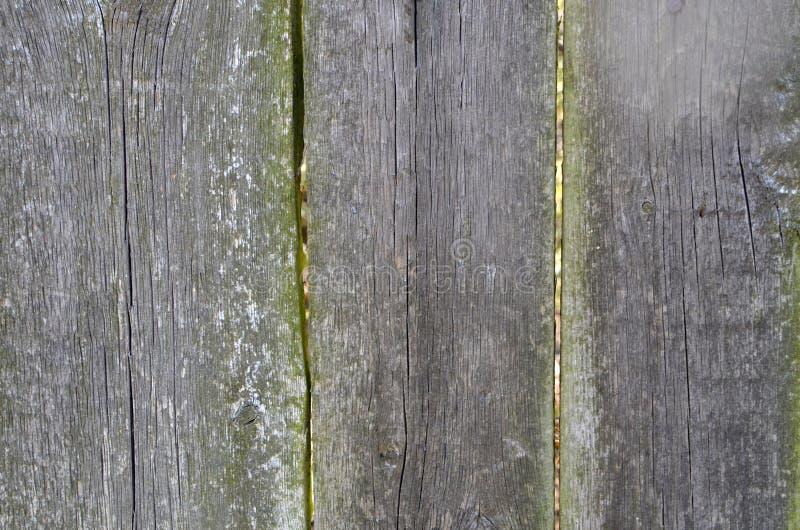 Старое деревянное вертикальное изображение текстуры планки хряков стоковое фото rf