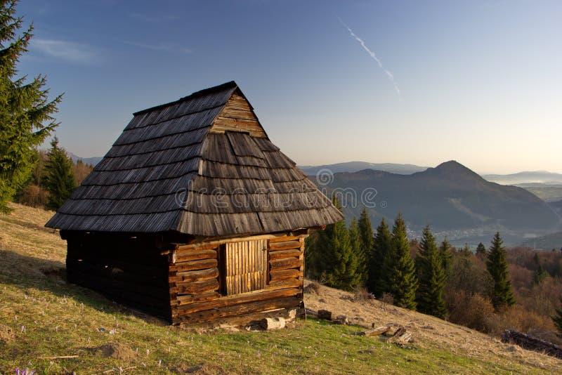 Старое деревянное укрытие на луге горы, выгон в сельской местности словаков стоковое фото