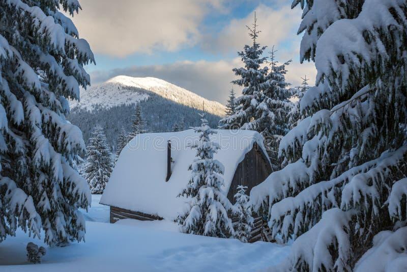 Старое деревянное укрытие, покрытое с снегом стоковые фото