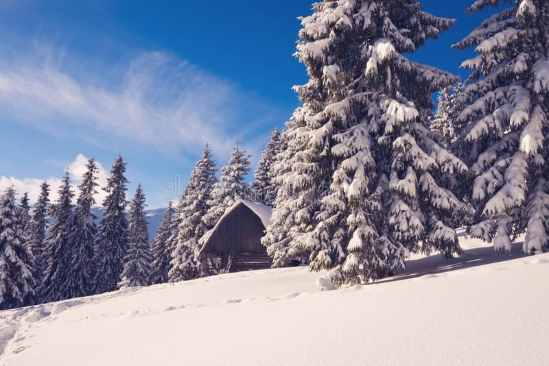 Старое деревянное укрытие покрытое с снегом стоковое изображение