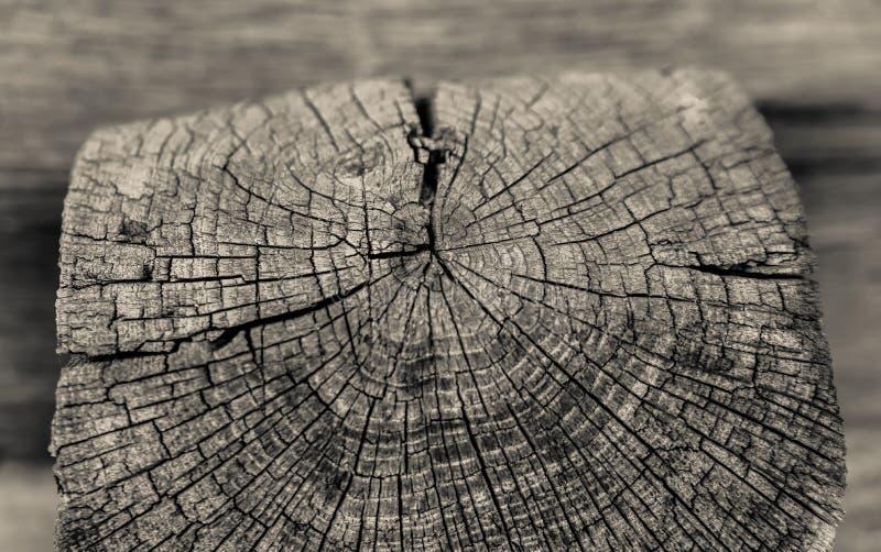 Старое деревянное poal стоковое фото