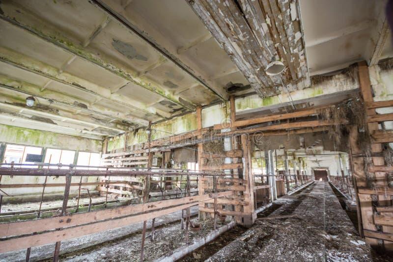Старое загубленное interrior сельского дома, большое здание стоковая фотография rf