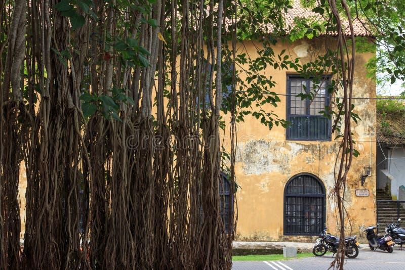Старое историческое здание - форт Галле - Шри-Ланка стоковые изображения rf