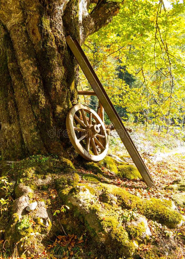 Старое колесо телеги полагаясь на вале стоковые изображения