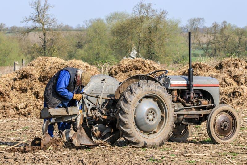 Старое серое massey fergusen трактор на паша спичке стоковая фотография
