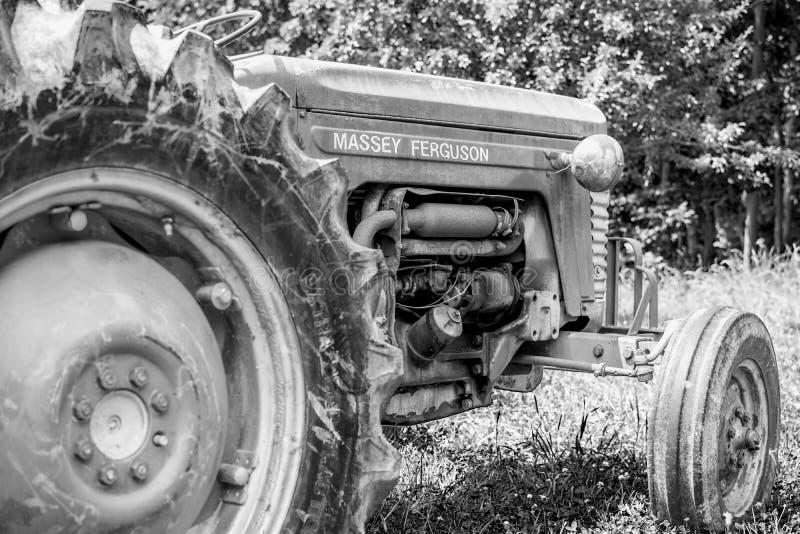 Старое Massey Ferguson стоковые изображения rf