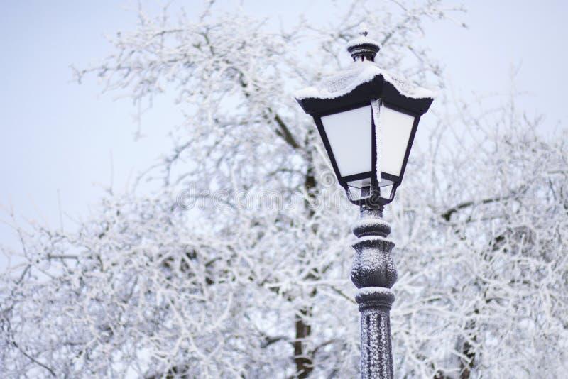Старомодный фонарик в парке зимы Все вокруг предусматривано с толстым заморозком стоковое изображение rf