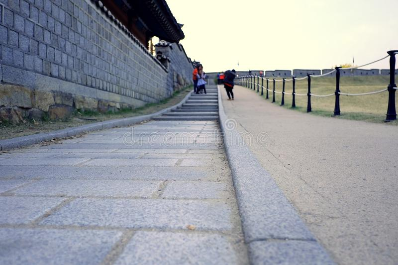 стародедовская дорожка стоковые фото