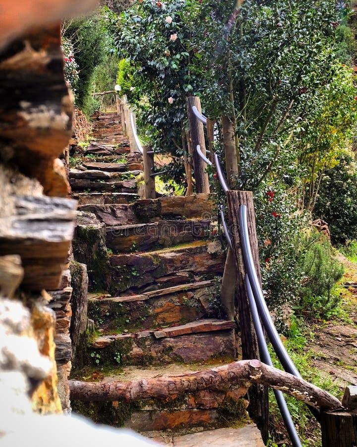 Стародедовские лестницы стоковые изображения